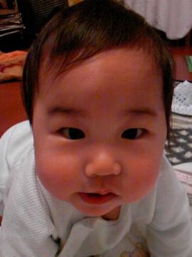 Baby1004