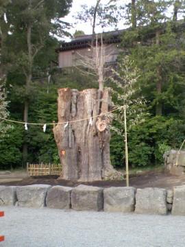 Enoshima16