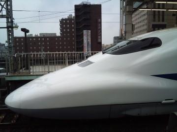Nara33