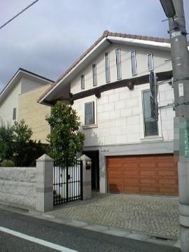 Seijyo64