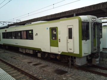 Akita21